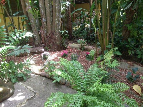 Hotel Guarana:                   Le jardin intérieur