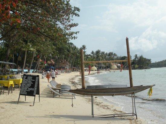 Chalala Samui Resort:                   plage