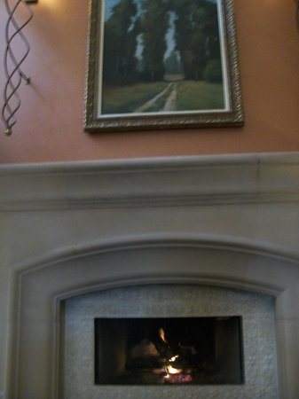 DoubleTree by Hilton Hotel Sonoma Wine Country:                   Fireplace