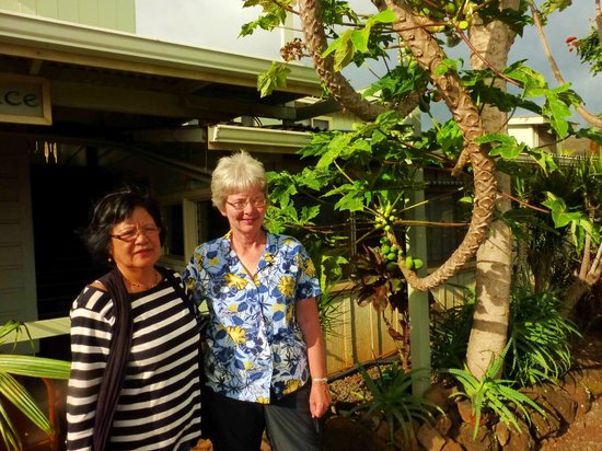 Kauai Palms Hotel:                   Linda with Millie near papaya tree.
