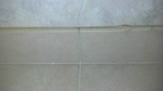 Microtel Inn & Suites by Wyndham Philadelphia Airport:                   half in thick of dirt in bathroom