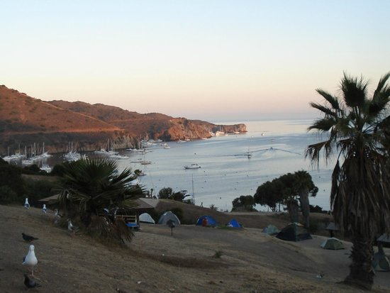 Two Harbors Campground:                   Regular tent camping and view of Isthmus Cove at twilight.
