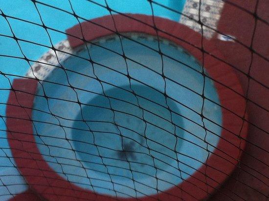 Parador Oasis:                   Desde la ventana