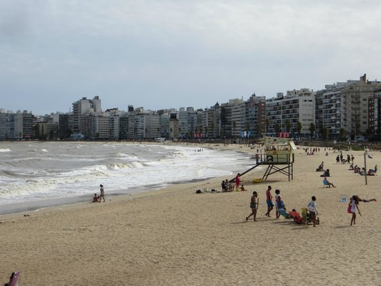 Cultura Cercana Tours: The beach at Montevideo