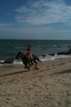 Las Pocitas Beach:                   Riding horses on the beach in Mancora