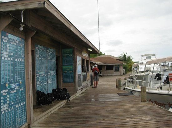Anthony's Key Resort :                   Dive Center