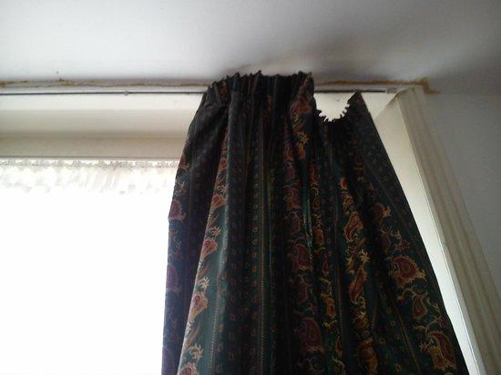 Notting Hill Hotel:                   window