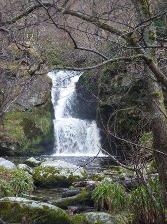 The Linn Falls:                   The beautiful falls