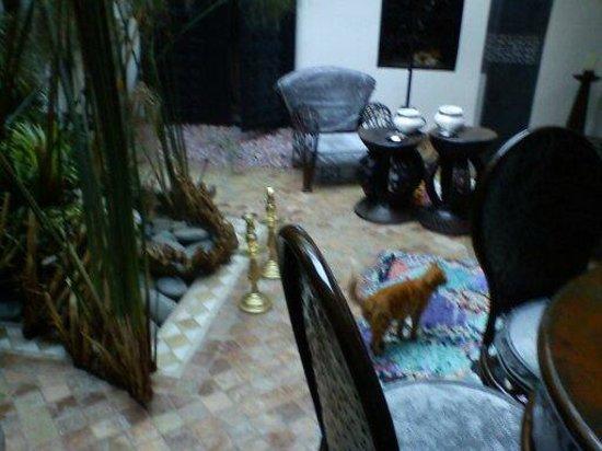 Riad Ta'achchaqa :                   patio interno con fuente