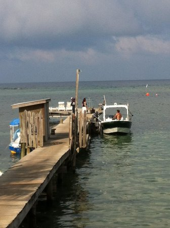 Splash Inn Dive Resort:                   Dock and diveboat in front of hotel