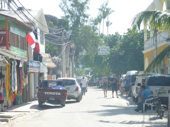 Paradisus Punta Cana Resort :                   street off beach to the right