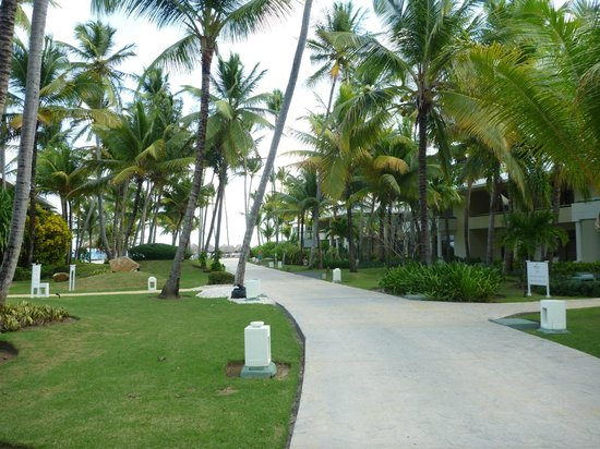 Paradisus Punta Cana Resort:                   from in front of our building