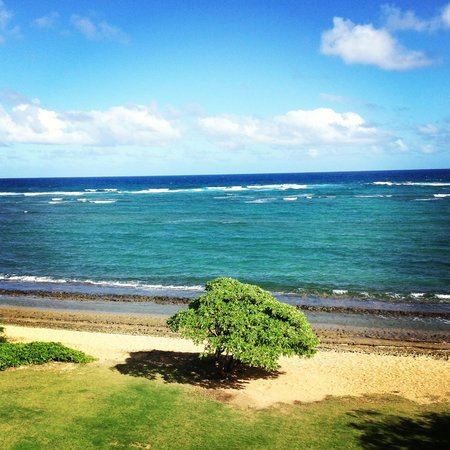 Courtyard Kaua'i at Coconut Beach:                   View from room in the middle of the day...gorgeous!