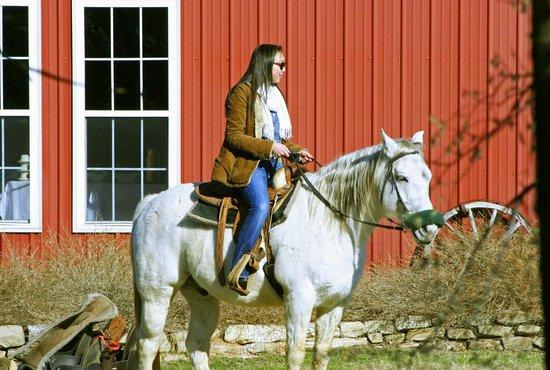 Lantana Resort:                   Stables & Horseback Riding