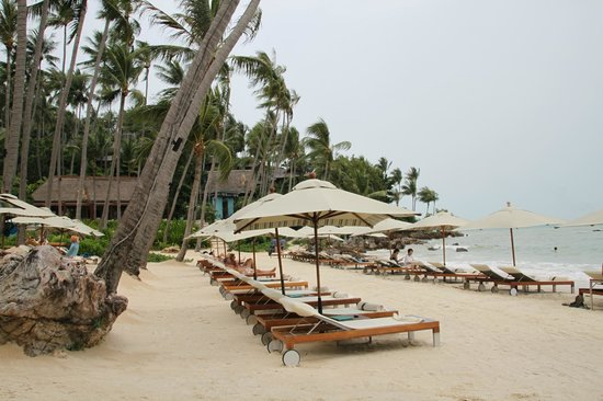 Four Seasons Resort Koh Samui Thailand:                   Beach in the morning