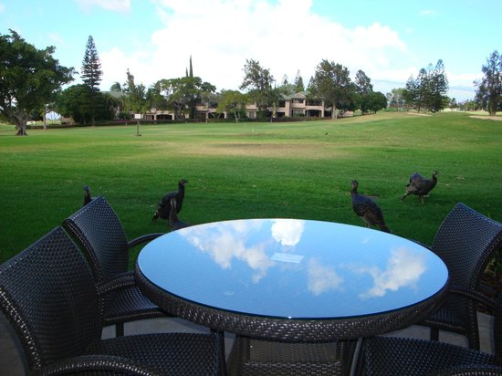 Paniolo Greens Resort:                   Unit is right on the golf course