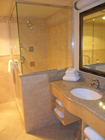 Bavarian Inn Lodge:                                     name of room is Bronner's jacuzzi suite