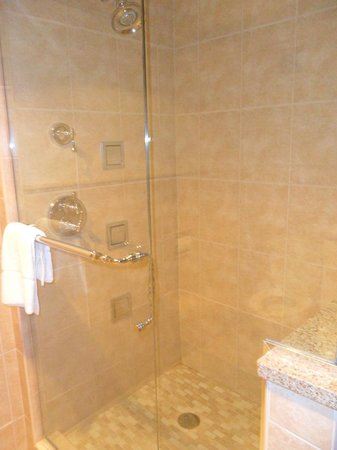 Bavarian Inn Lodge:                                     name of room Bronner's jacuzzi suite pic of shower