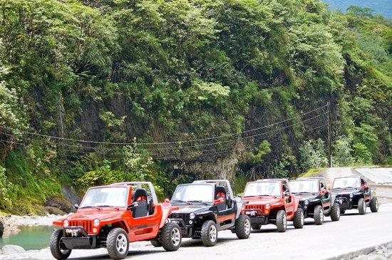 Moorea Beach Cars