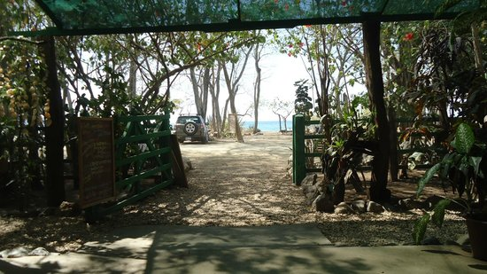 Cafe El Manglar:                   Nice view