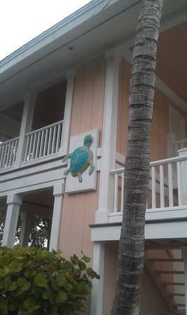 Turtle Bay Condos:                   Turtle decoration near entrance