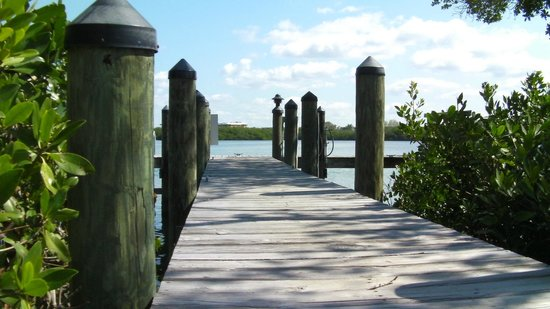 Turtle Bay Condos :                   Peaceful dock area on Lemon Bay