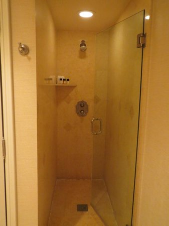 The Atlantic Hotel & Spa: Shower