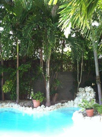Suite Dreams Inn by the beach :                                     private pool at Hemingway Suite