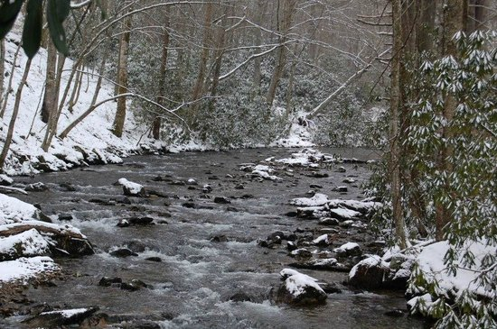 Roan Mountain State Park:                                     Snow on the river