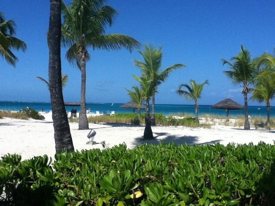 Club Med Turkoise, Turks & Caicos:                   Amazing Beach!