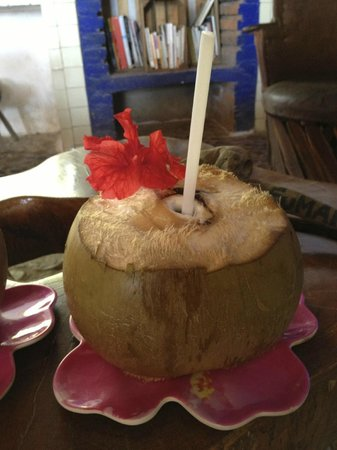 Meson Casa de Piedra:                                                                         Welcome coconut