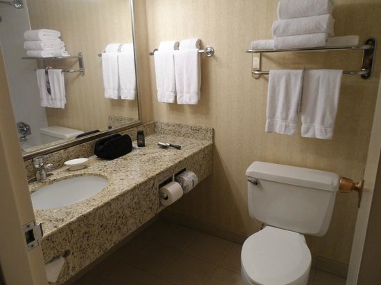 Riverwalk Hotel Downtown Neenah:                   Bathroom