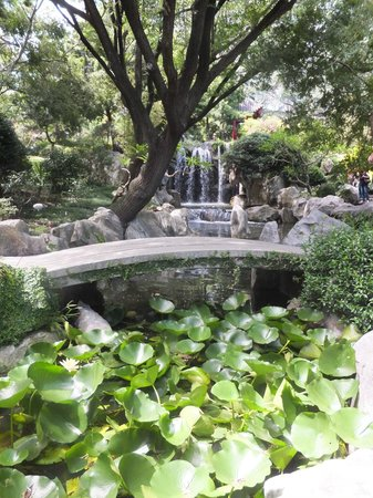 Chinese Garden of Friendship: Peaceful