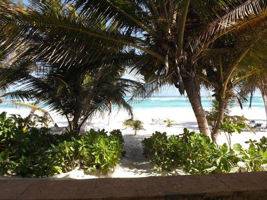 Hotel Cabanas Tulum: Vista desde la habitacion