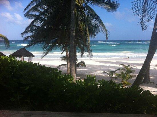 Cabanas Tulum: Vista desde la habitacion