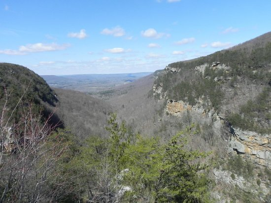 Cloudland Canyon State Park: Another canyon view