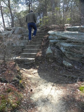 Cloudland Canyon State Park: The narrow stairs going to the main overview
