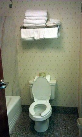 Best Western Plus Belle Meade Inn & Suites :                   Well stocked, soft towels