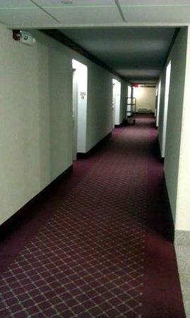 Best Western Plus Belle Meade Inn & Suites :                   quiet clean halls