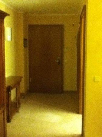 Altstadt Hotel Bräuwirt:                   Hallway facing room entrance.