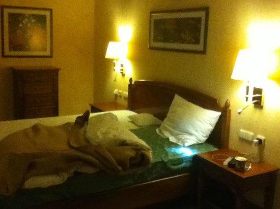 Altstadt Hotel Bräuwirt:                   Yellow color from low lighting...