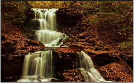 Ricketts Glen State Park:                   Fall colors reflecting
