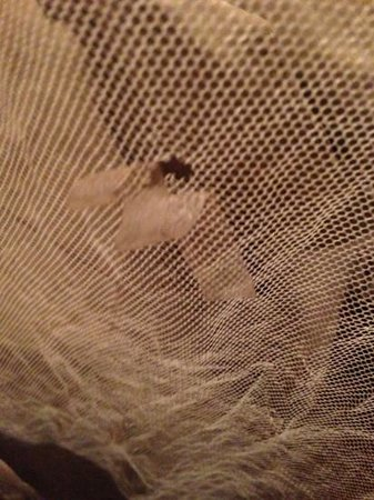 Villa Tissa Beach Resort:                   Sellotape to cover hole in mosquito net? Nice...