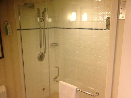 Newport Beach Marriott Hotel & Spa: shower