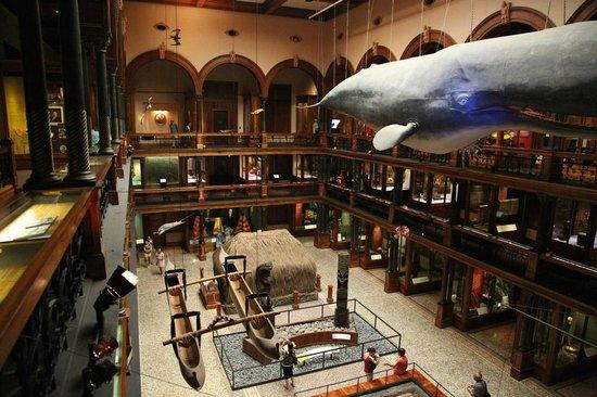비숍 박물관