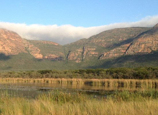 Wildside Camp:                                     Lower escarpment
