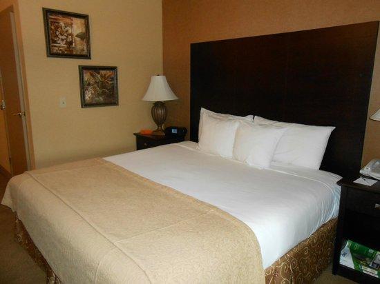 Oxford Suites Portland - Jantzen Beach:                   king-sized bed