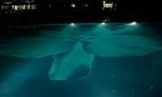 Halekulani Hotel:                   6:00amのプール
