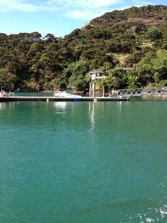 Kingfish Lodge:                   jetty