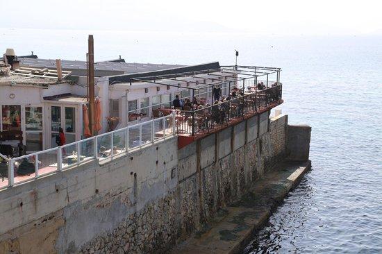 Dauphins Corniche :                   le restaurant